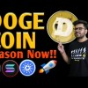 Dogecoin Pump Coming Rapidly🔥Bitcoin Update On the recent time | Bitcoin Diagnosis On the recent time | Dogecoin Label Prediction