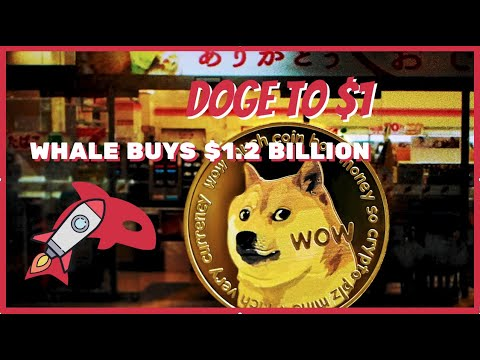 WHALE BUYS $1.2 BILLION OF DOGECOIN TODAY! YOU NEED TO SEE THIS! Elon Musk PUMPS RABBIT COIN?