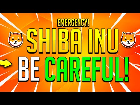 SHIBA INU ARMY WATCH OUT! WHY YOU NEED 100,000,000 SHIB COINS