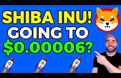 SHIBA INU COIN GOING TO $0.00006 SOON?! ANALYSTS PREDICT BIG MOVE!