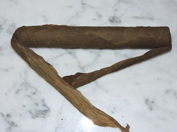 Leaf by Oscar Sumatra  Unwrapped