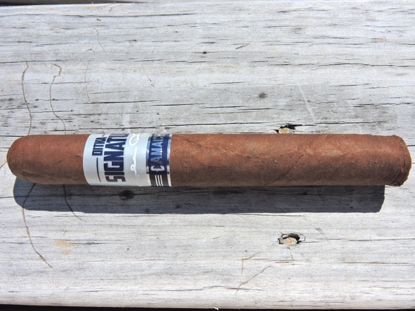 Ditka Signature Series by Camacho