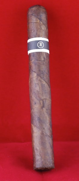 RoMa Craft CroMagnon The Anthropology