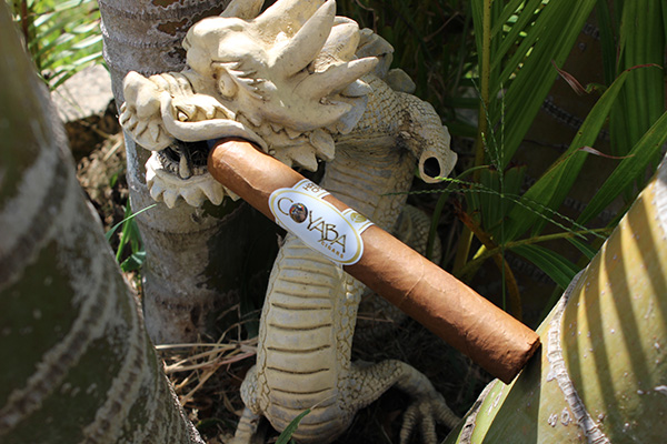 Coyaba Cigars White Label