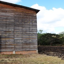 Yayabo Curing Barn