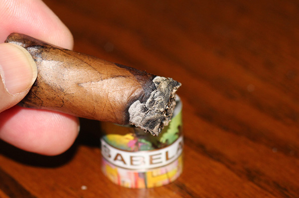 Isabela Cigars Shape Shifter