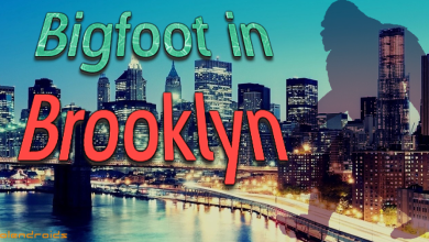 Photo of Sdfiles #32 – Bigfoot in Brooklyn