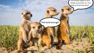 Photo of Meerkat Massacre – #273