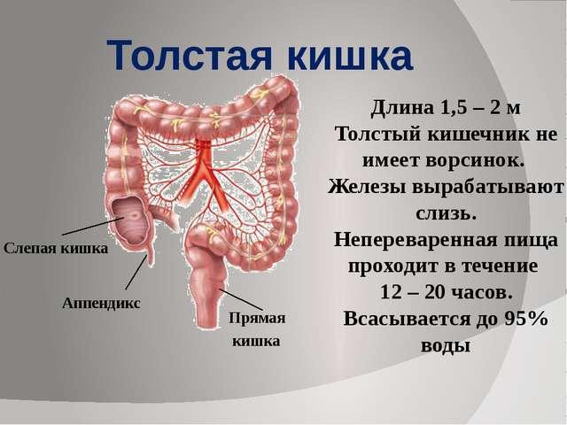 Prostatitis jobb hipochondrium
