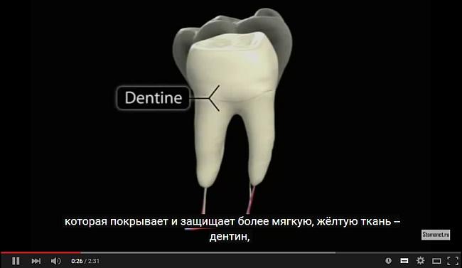 Дентальный абсцесс (видео)