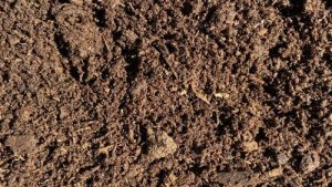 Compost – Aged and Screened – Sold Per Yard