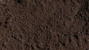 Pulverized Top Soil – Sold Per Yard