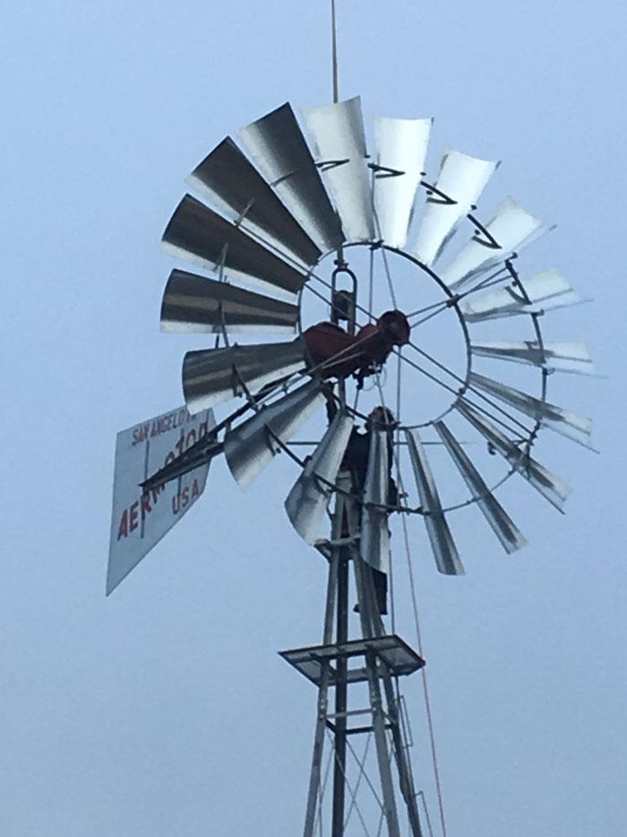 Windworks by Stone & Spade