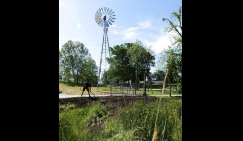 Earthworks on the Farm by Beth De Bona