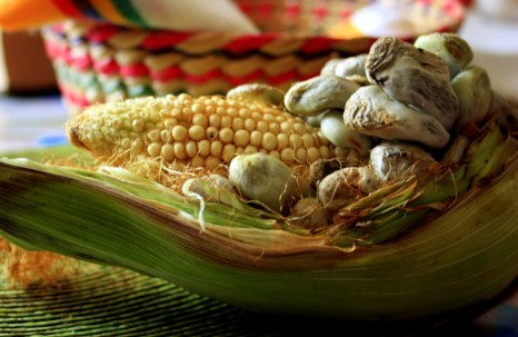 Corn fungus is the best