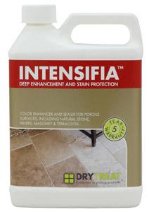 INTENSIFIA_web