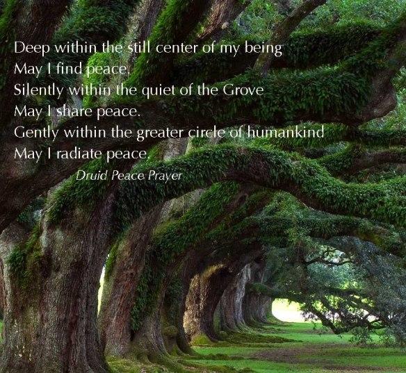 oak grove1
