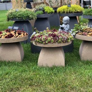 Staddle Stone Planters
