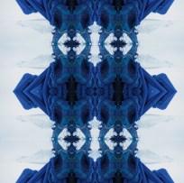 Kvera Blue Horned Blue Bird , archival inkjet print on rag paper, and on wallpaper, 2013