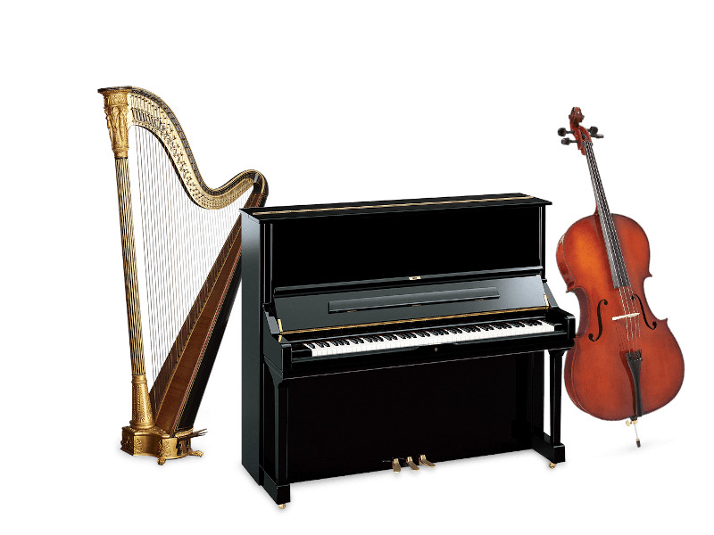 Negozi, musica, basilicata, Italia, Shop Music, Lauria