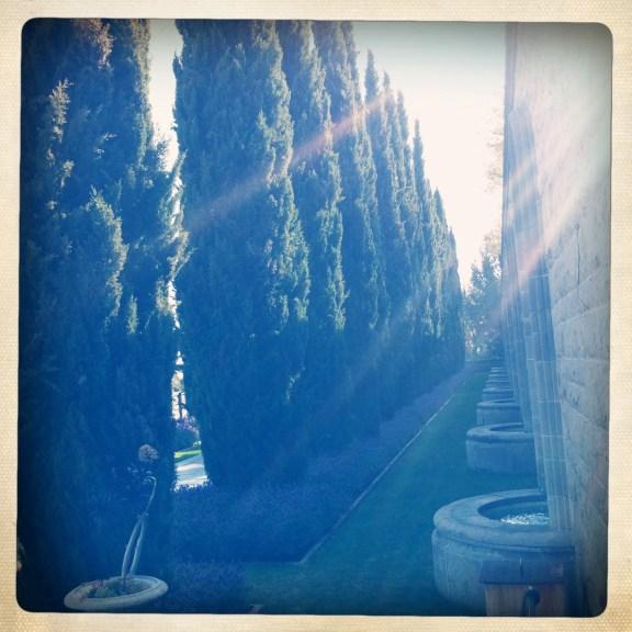 Greystone Park & Mansion, Grounds