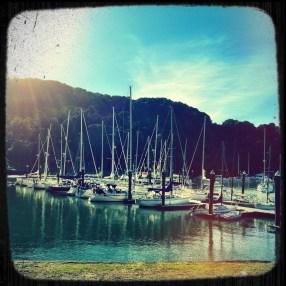 Boats on Angel Island