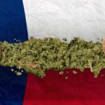 houston legalise