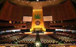 UN weed report