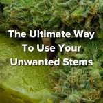 how to reuse your cannabis stems