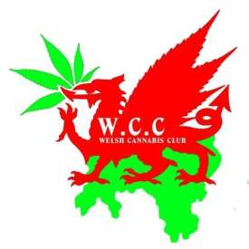 welsh cannabis legalisation