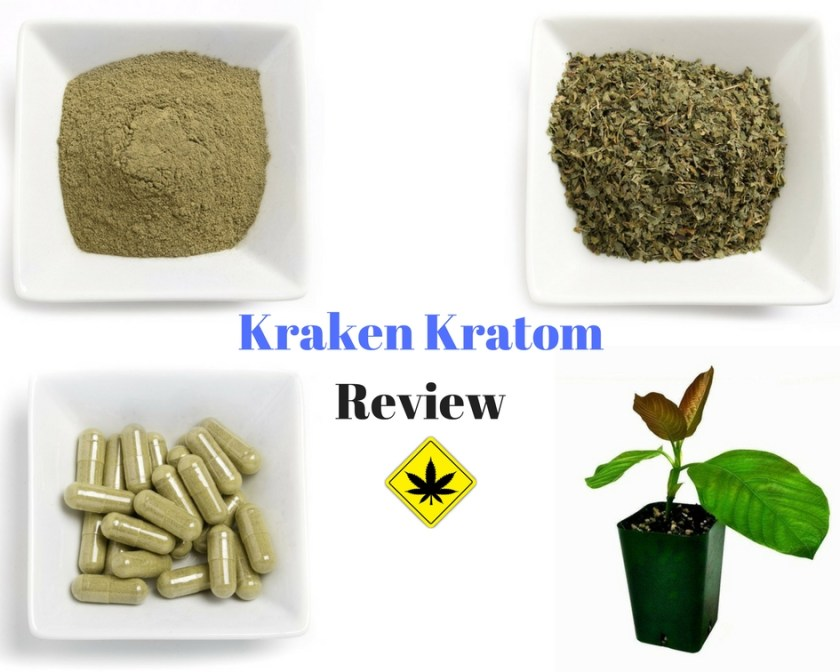 Kraken Kratom Review Price Variety Legit And Experience