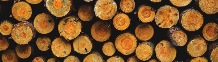 wood-saw-sharpening