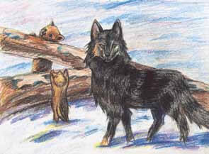 Arcadia, the Adventurous Wolf Girl wolves visiting