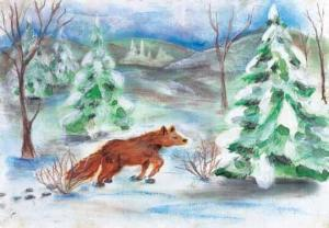 Cry of the Wild Heart fox is enjoying the snow