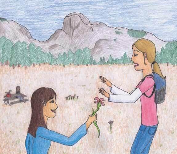 Yosemite Grasslands finding flowers