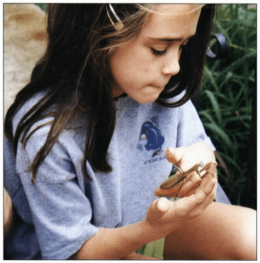 Forget Me Not girl holding praying mantis