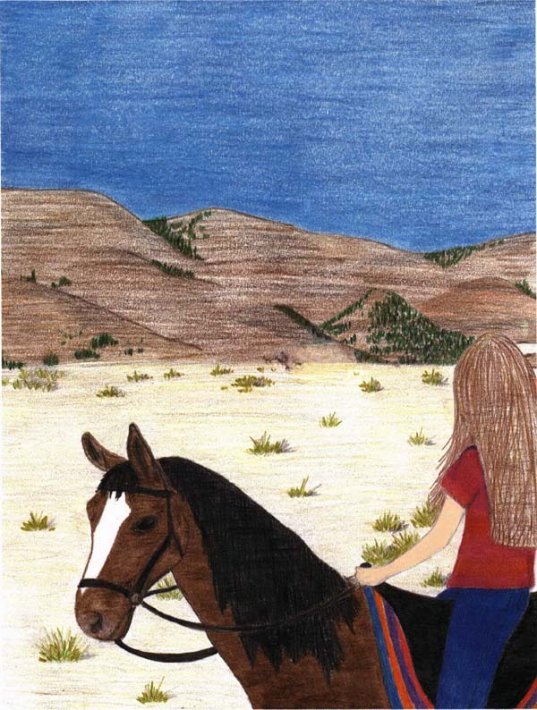 Emilys Mustang a girl riding her horse
