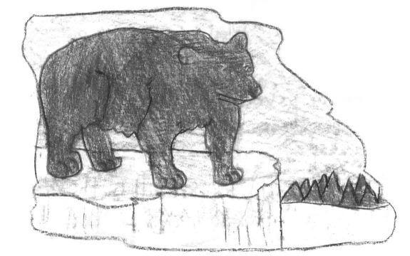Lakota black bear