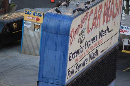 Which Way Car Wash