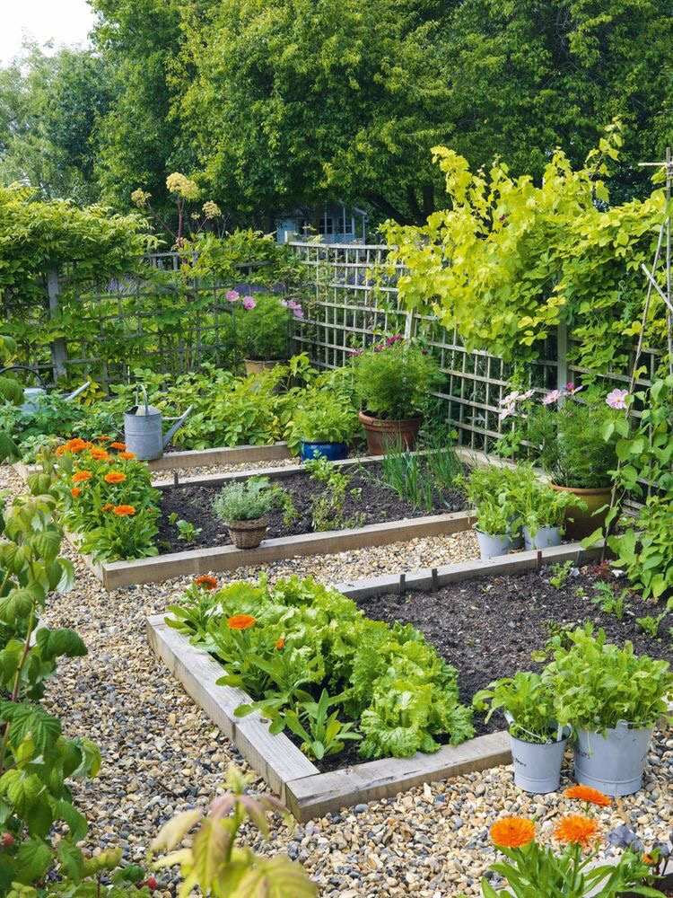 Must haves garden space