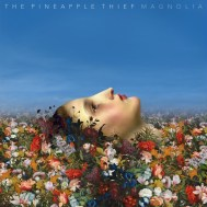 The Pineapple Thief