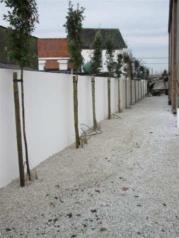 stoop-projects-tuinaanleg-vijveraanleg-8
