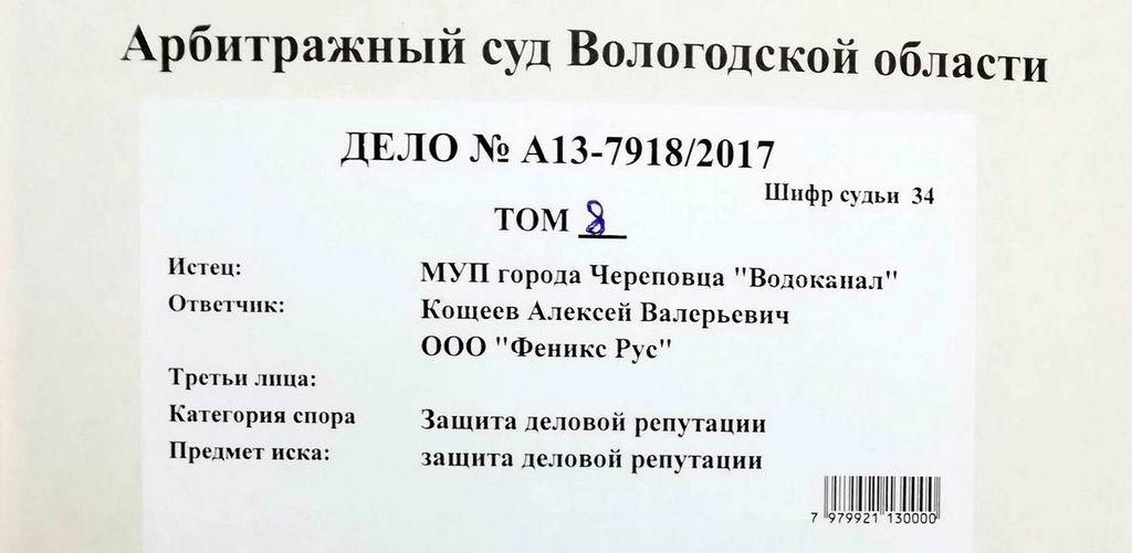 Дезавидное дело А13-7918/2017. Экспертиза