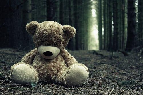 lonely-lost-sad-teddy-bear-woods-Favim.com-44395
