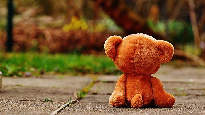 Parental Alienation Syndrome for Good Judges