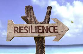 Resilience isn't just being tough; it's a skill you can develop. Here's how I did it.