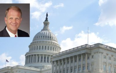 Congressional Resolution to reform custody courts