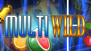 Multi Wild Slot