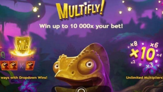 multifly slot rules
