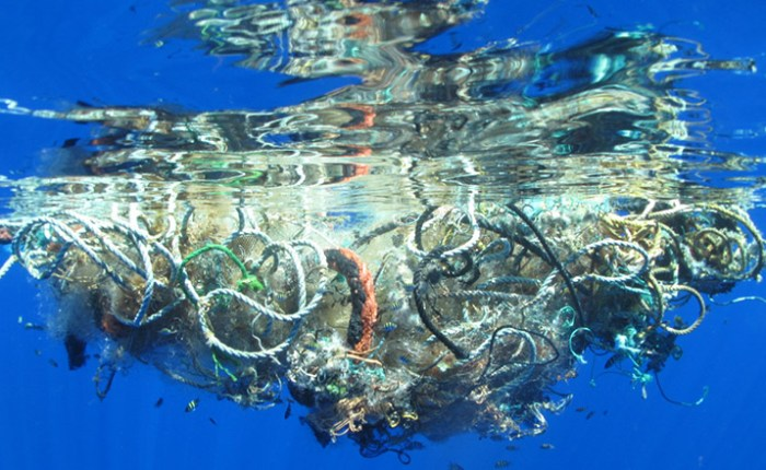 The biggest plastic dump in the world: The ocean